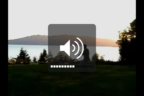 iphone volume control screenshot
