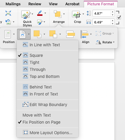 Microsoft Word's text-wrap pane